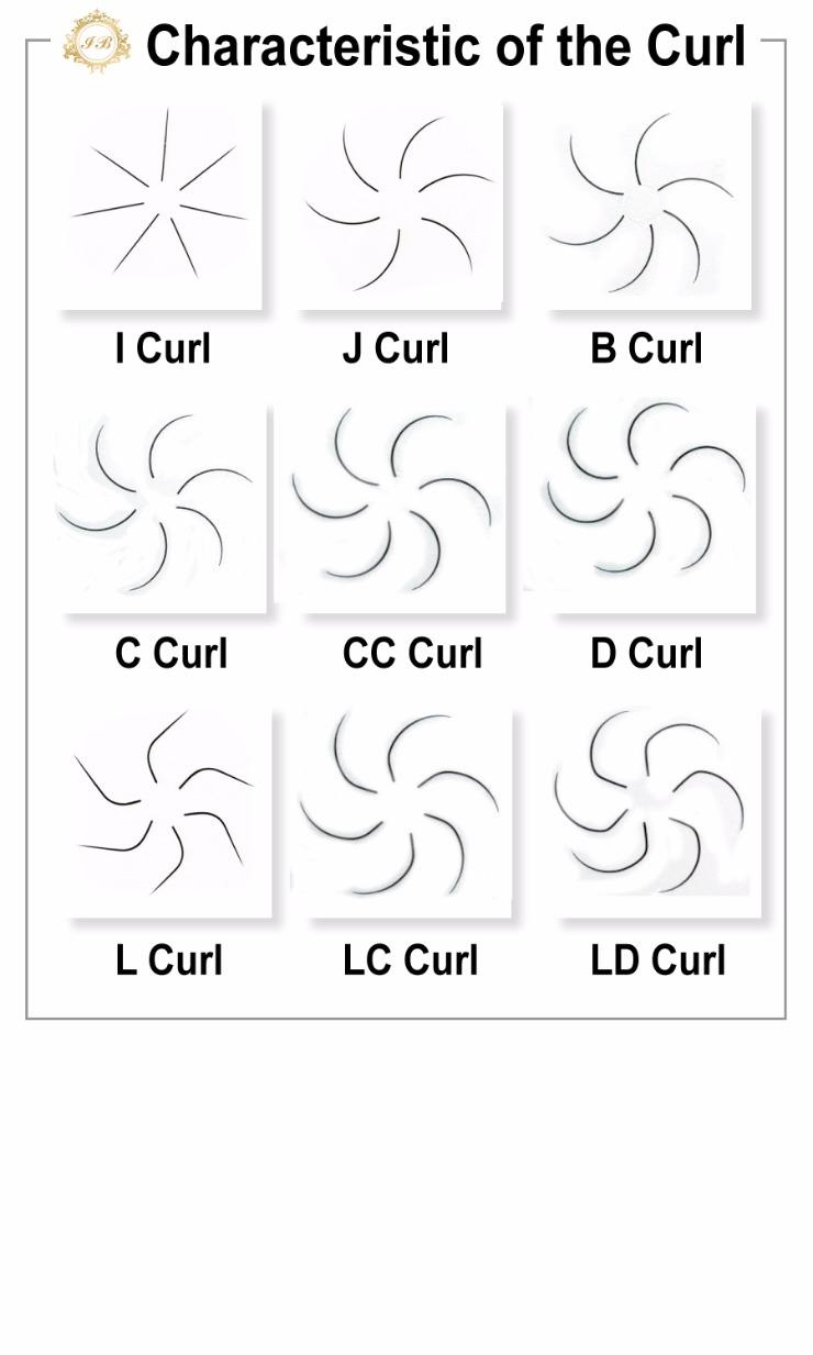 characteristic-curl-2.jpg